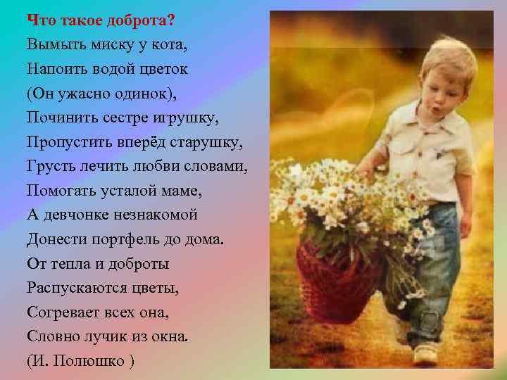 """Сочинение """"что такое доброта?"""": план, содержание, пример :: syl.ru"""