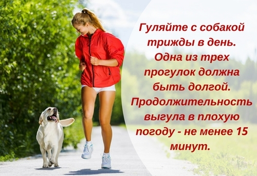 Как надо гулять | brodude.ru