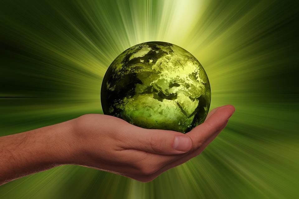 Что такое экология человека   nur.kz