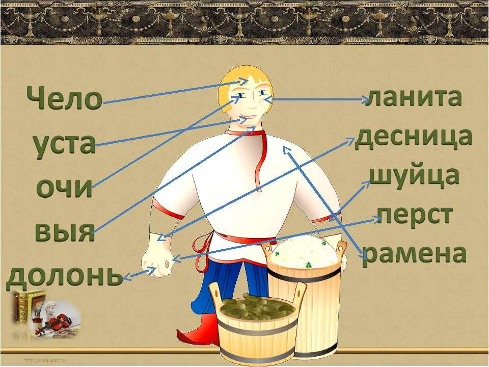 Архаизмы и историзмы: примеры устаревших слов