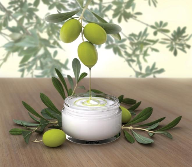 Есть ли разница между оливками и маслинами и их польза