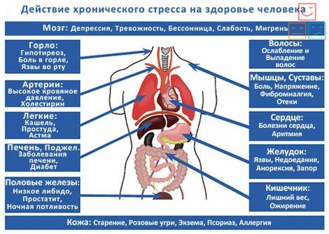 Какие бывают болезни от стресса