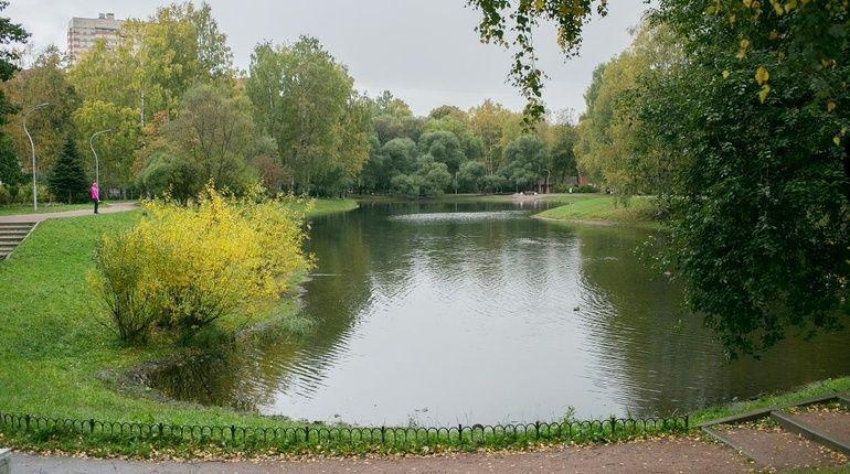 Водоемы озера пруды-использование | очистка прудов, рек, водоемов