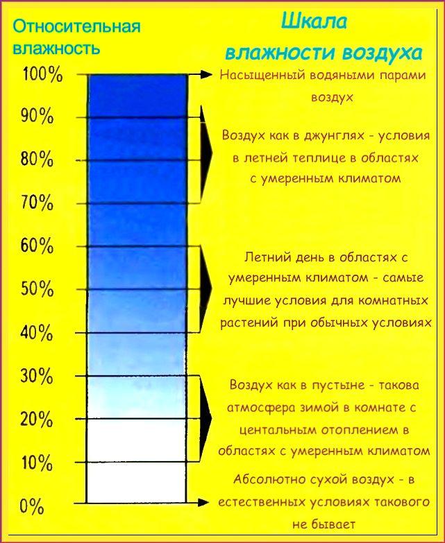 Что такое влажность воздуха? от чего она зависит? - other