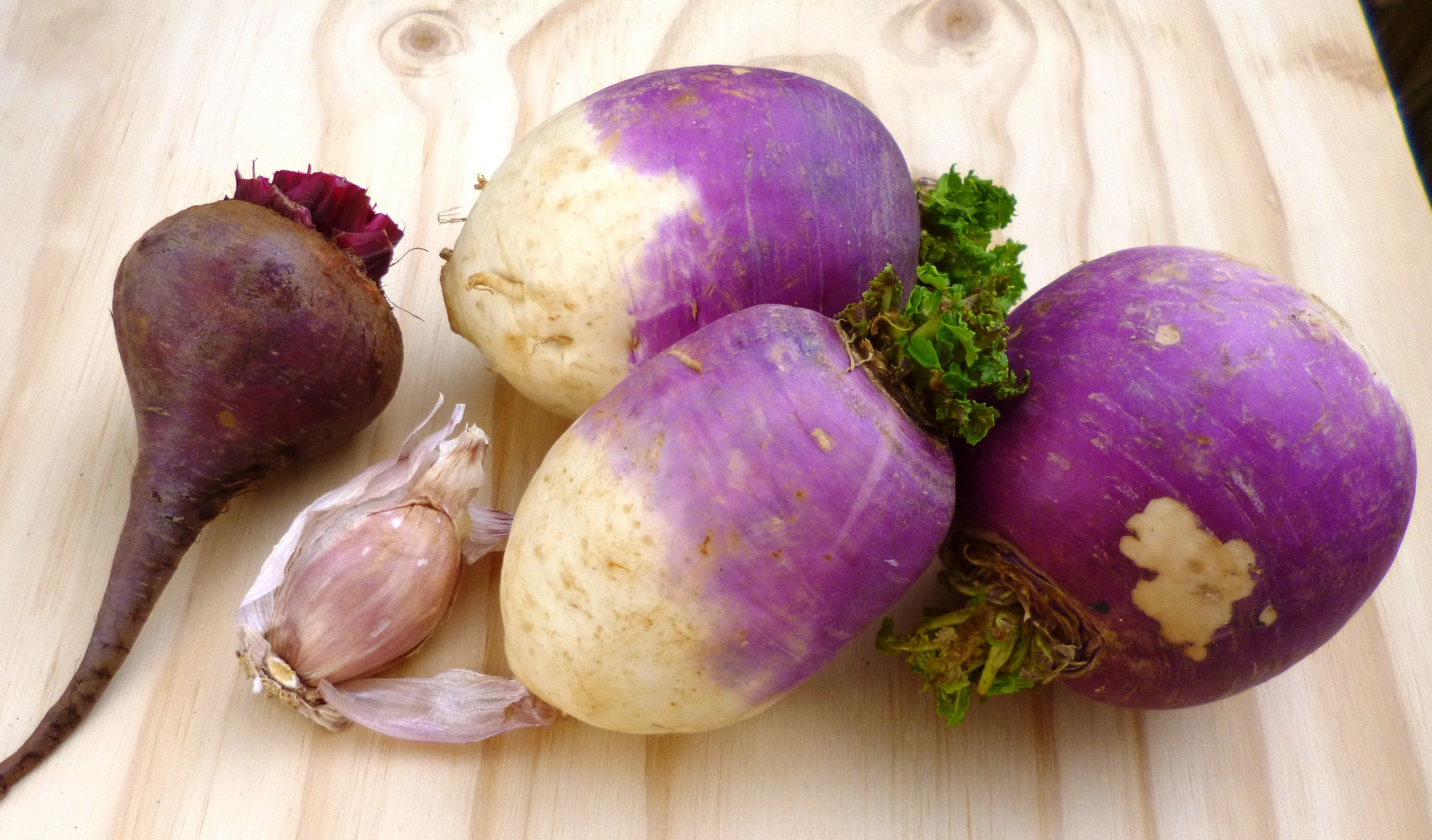 Турнепс – что это такое, полезные свойства и противопоказания, как вкусно приготовить и вырастить корнеплод