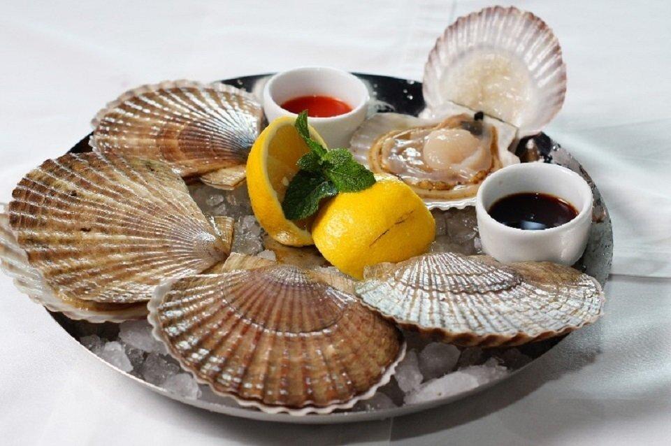 Морские гребешки — полезные свойства и вред | польза и вред