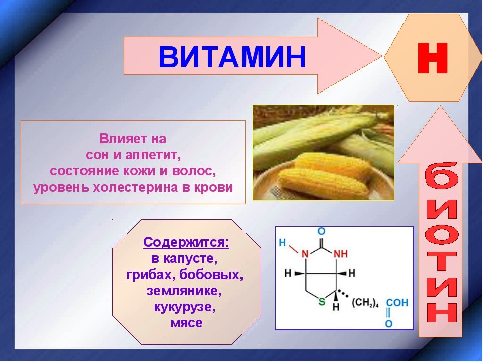 Витамин b7 (биотин): важные свойства, польза и вред для организма