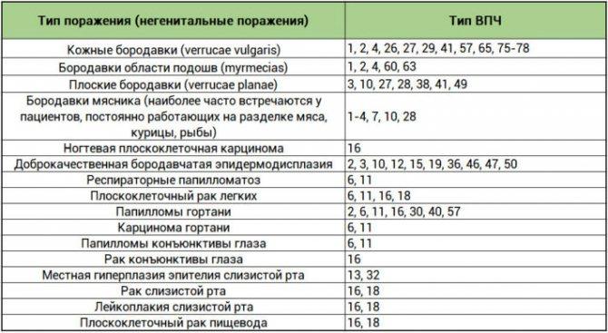 Впч 16 и 18 типа у женщин: лечение, наблюдение, диагностика