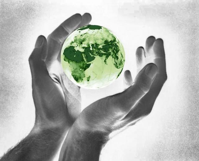 Методы экологического мониторинга