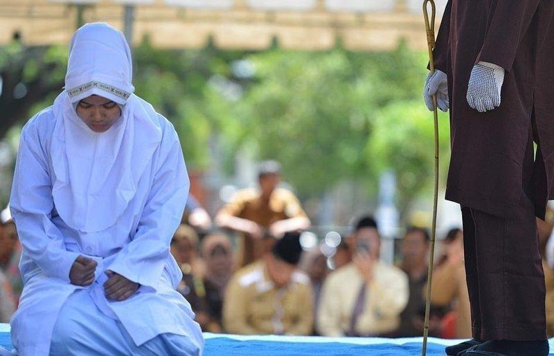 Шариат. необходимость его понимания   islam.ru