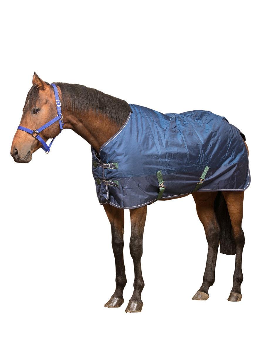 Попона для лошади: предназначение, обзор
