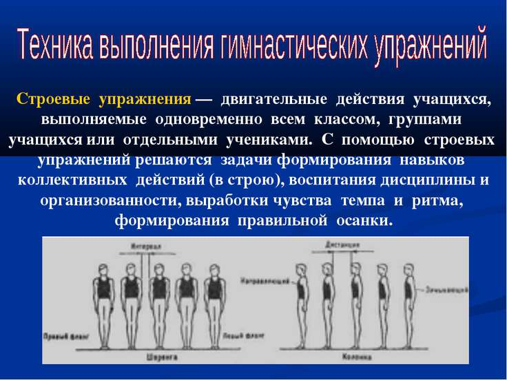 «методика преподавания базовых строевых упражнений на уроке гимнастики со студентами сгга»   контент-платформа pandia.ru