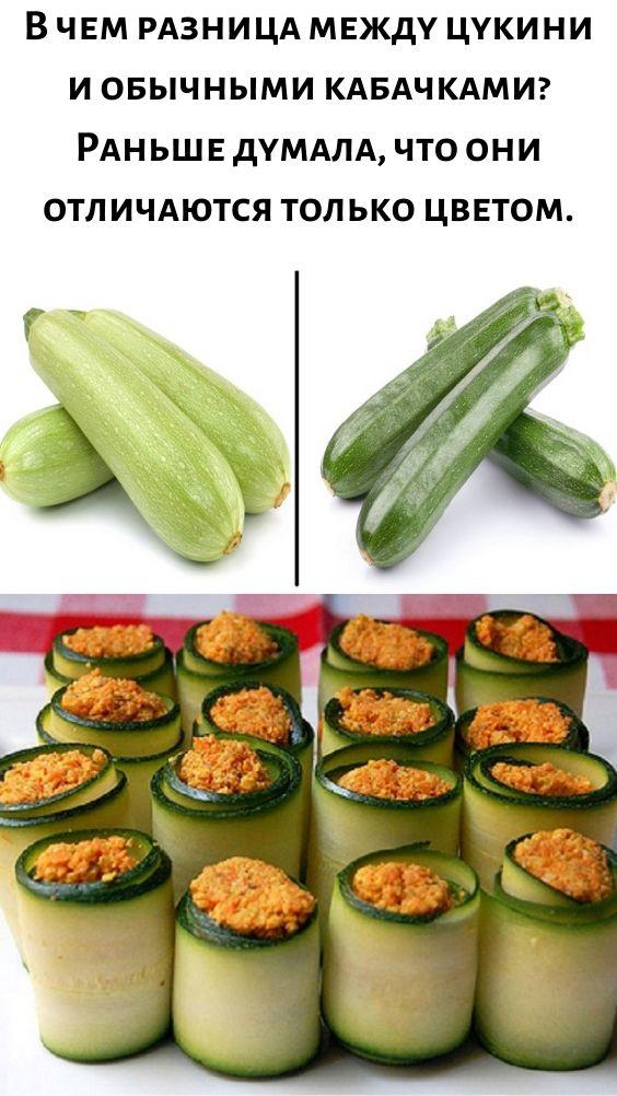 Разница между обычным кабачком и цукини. фото, видео рецепты — траварт