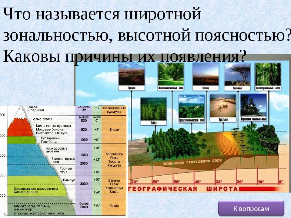Чем отличается широтная зональность от высотной поясности: примеры, что это такое, закон, почвы области