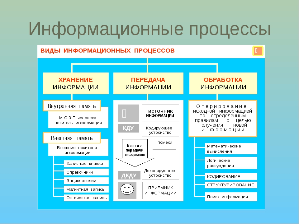 Информация и информационные процессы. основные информационные процессы и их виды :: businessman.ru