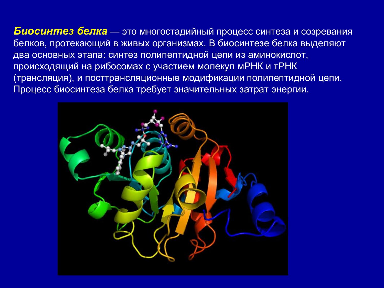 Что такое транскрипция в биологии и как она происходит