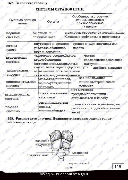 § 8. органы и системы органов
