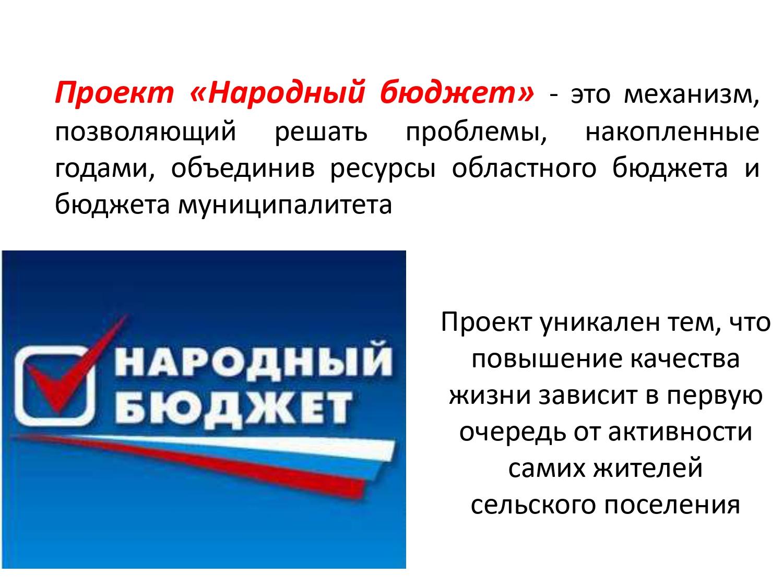"""Как работают """"народные бюджеты"""" в регионах северо-запада — российская газета"""