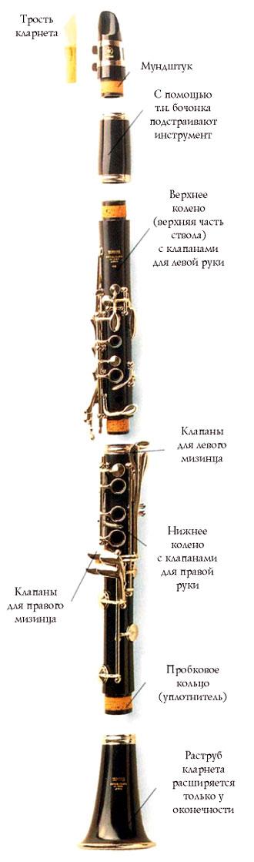 Что это - кларнет? виды кларнетов
