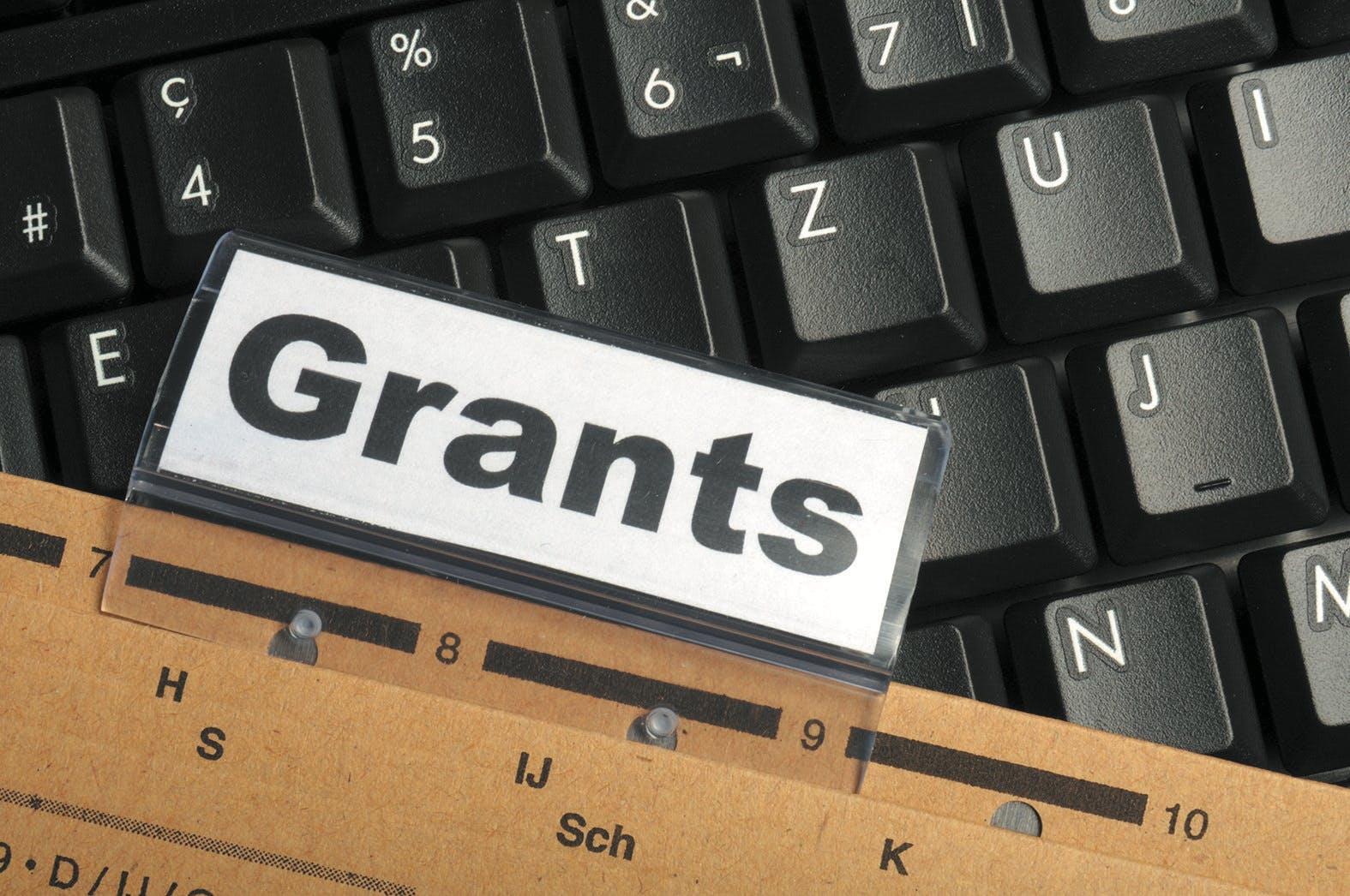 Получение гранта на развитие и поддержку малого бизнеса - инстуркция