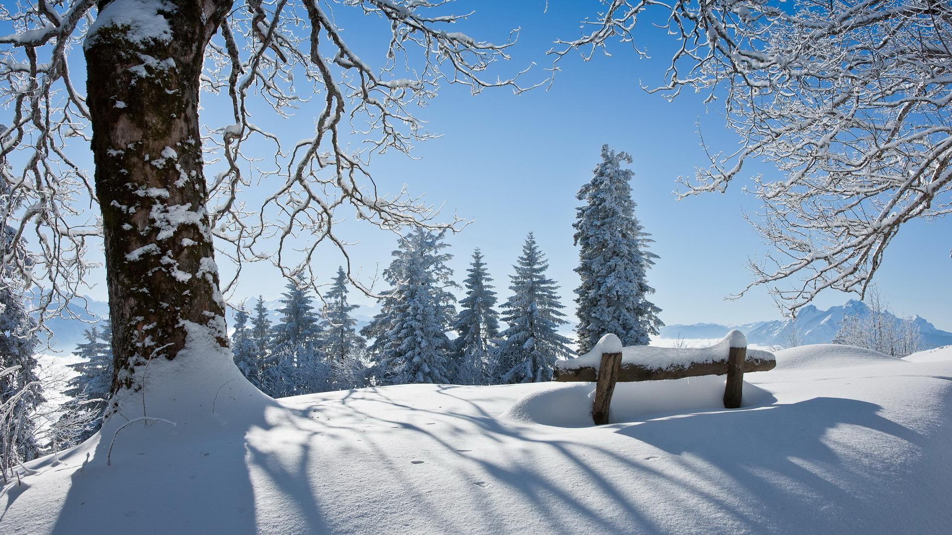 Зима (город)
