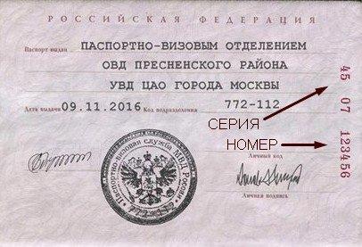 Как записывать серию и номер паспорта. серия паспорта и личный номер – что означает и где посмотреть