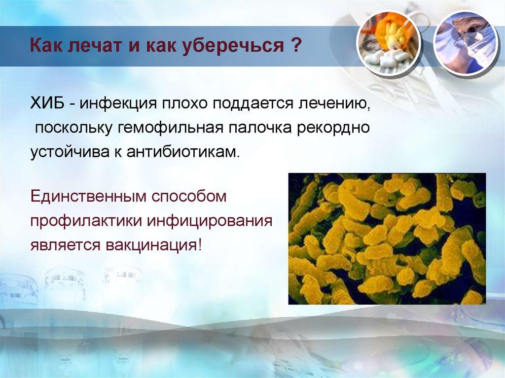 Гемофильная инфекция (хиб - инфекция)