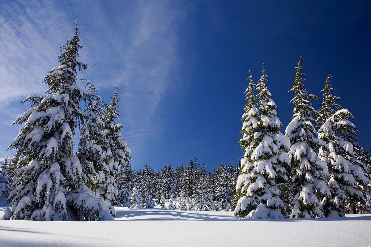 Что такое снег? откуда берется и из чего состоит снег?