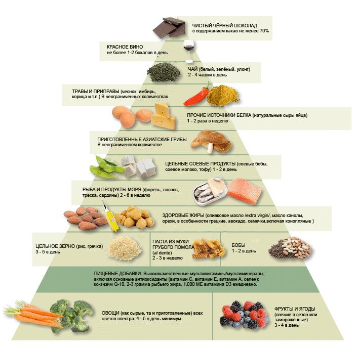 Рациональное питание. принципы рационального питания и его значение