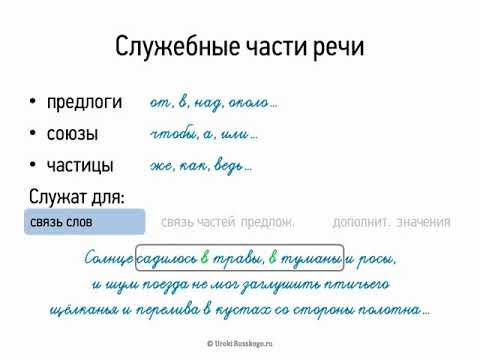 Что такое самостоятельные слова в русском языке. чем отличаются самостоятельные части речи от служебных - права