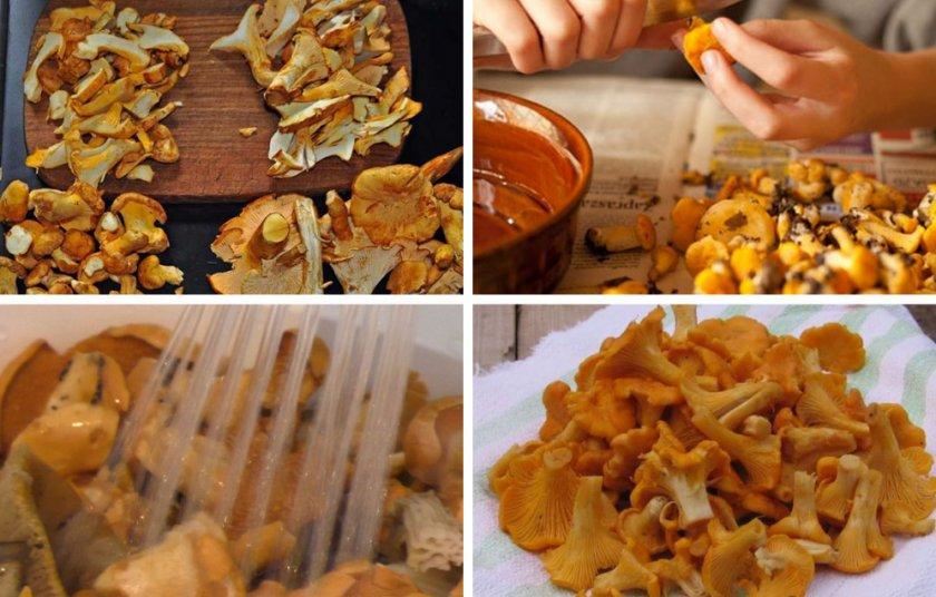 Рецепты из пашины, 22 рецепта, фото-рецепты / готовим.ру