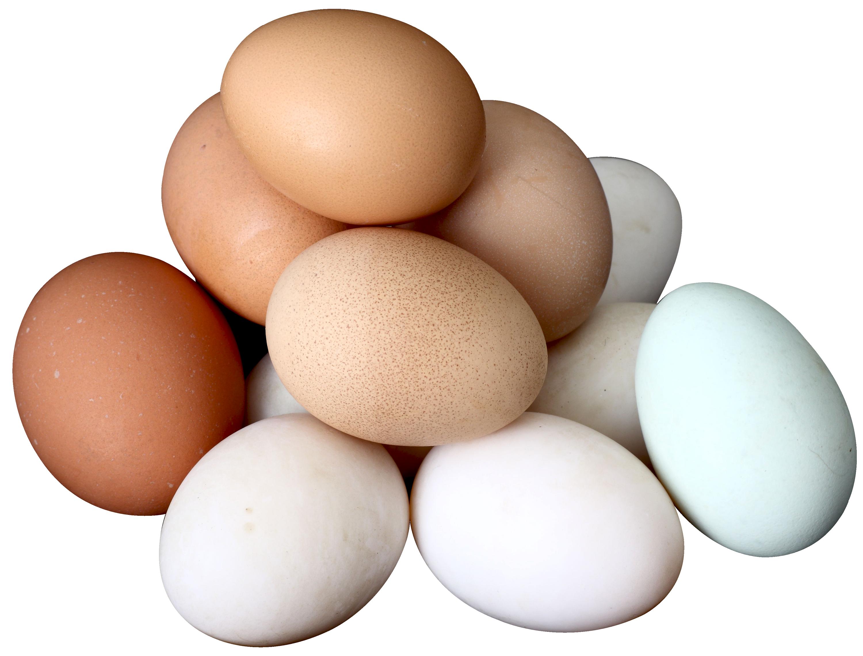 Яйцо куриное: полезные свойства и факты   food and health