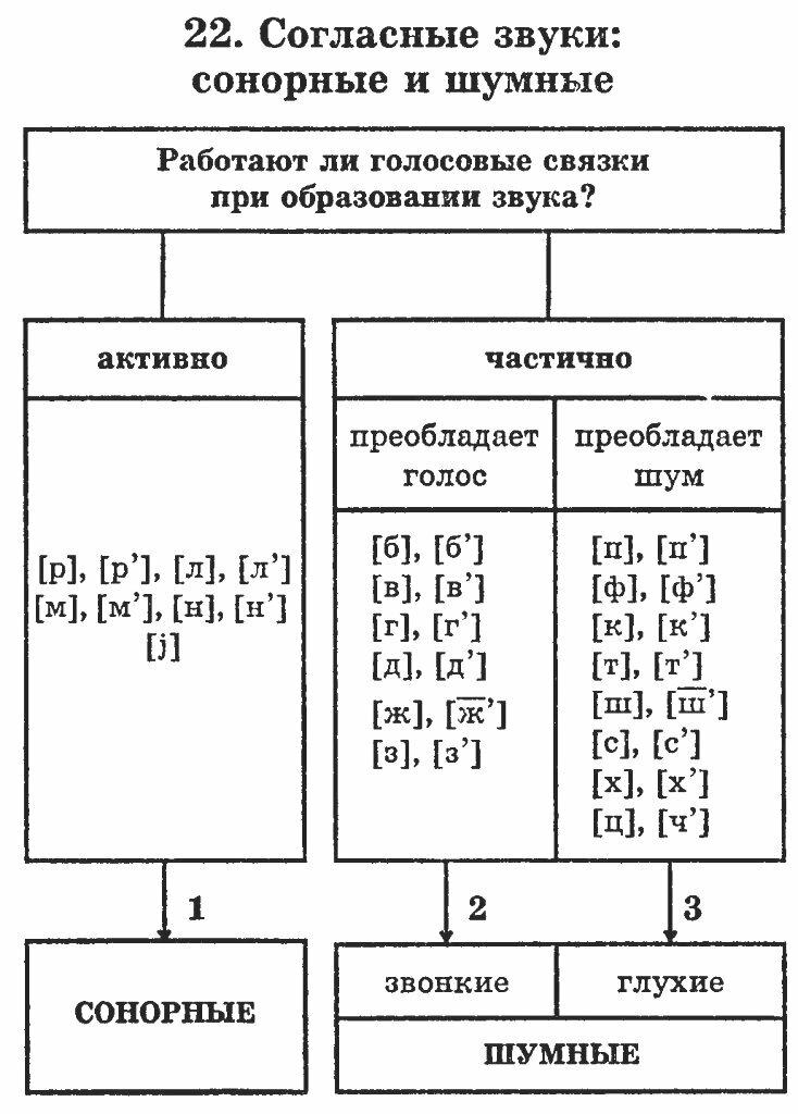 Что значит сонорные буквы. сонорные согласные в русском языке