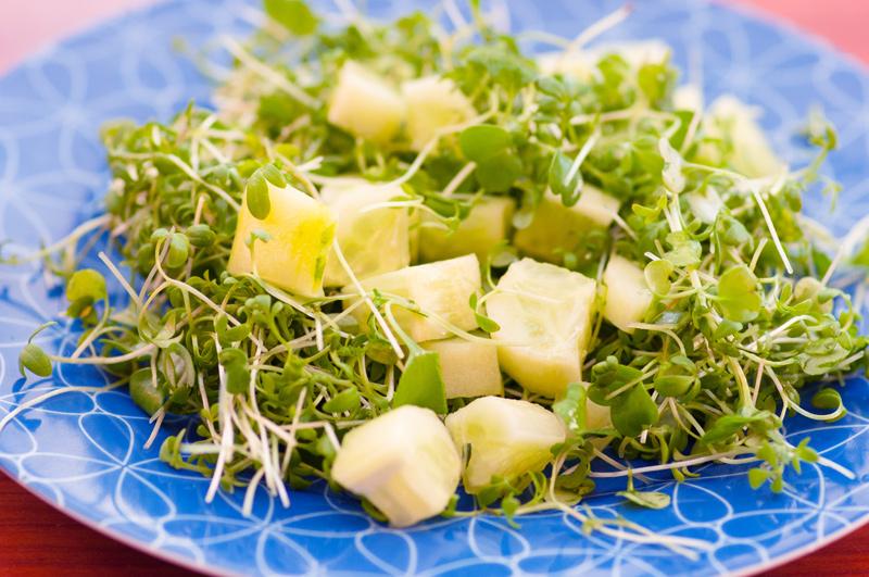 Кресс-салат: состав, польза и свойства, применение