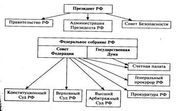 Биология: орган. что такое система органов (биология)