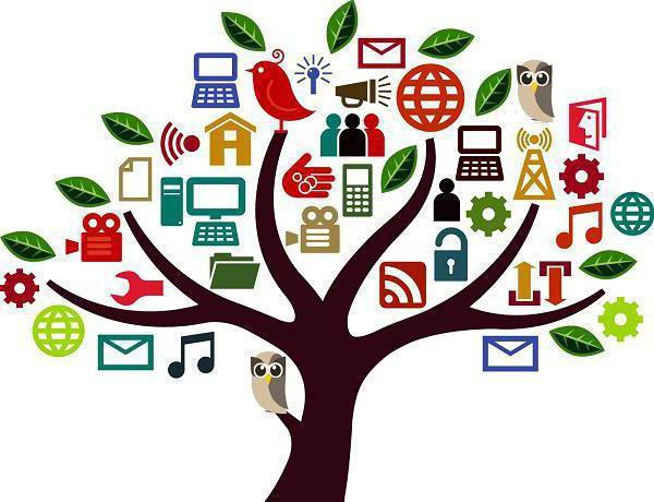 Идеи социальных проектов. топ социальных идей для предпринимателей - технология бизнеса