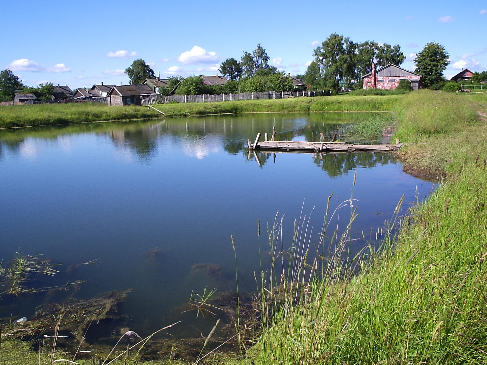 Разница между прудом и озером | очистка прудов, рек, водоемов
