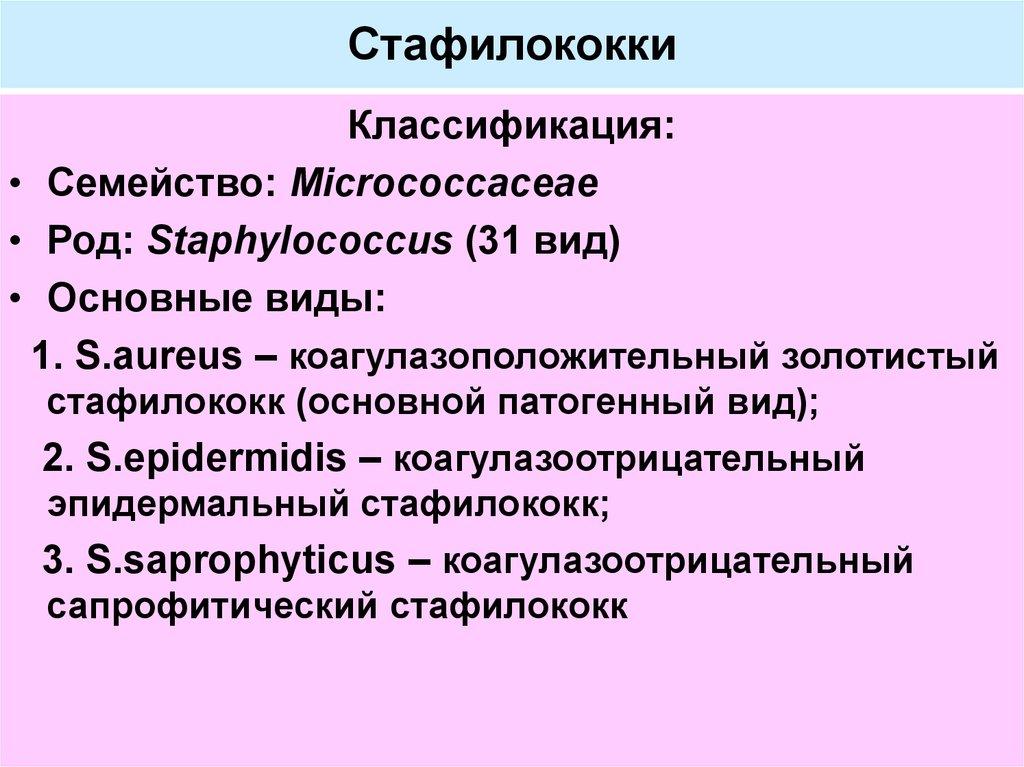 Staphylococcus epidermidis что это такое