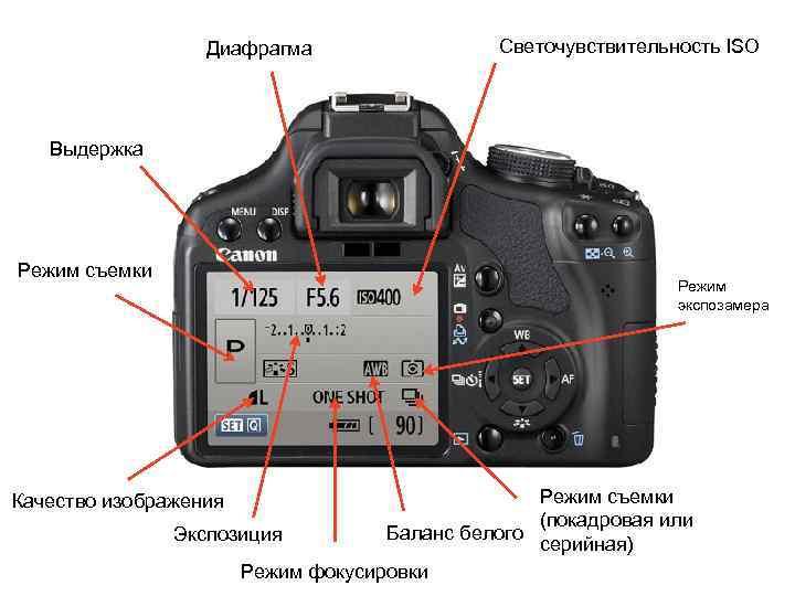 Что такое iso в фотоаппарате?