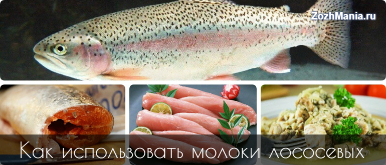 Молоки рыбные - рецепты