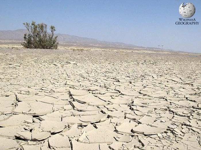 Пустыня — википедия. что такое пустыня