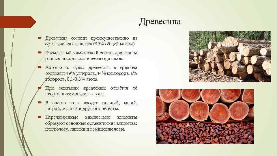 Древесина что это? значение слова древесина