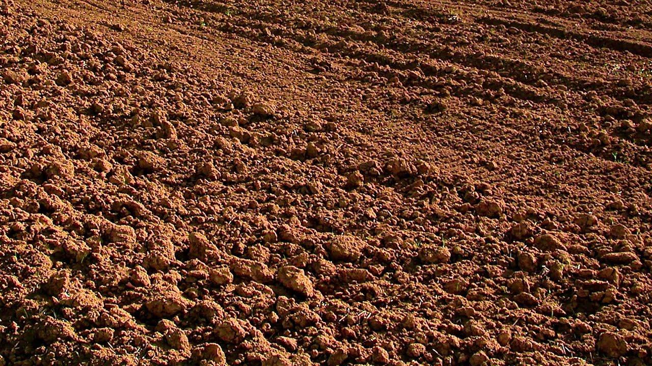 Виды грунтов и их характеристики