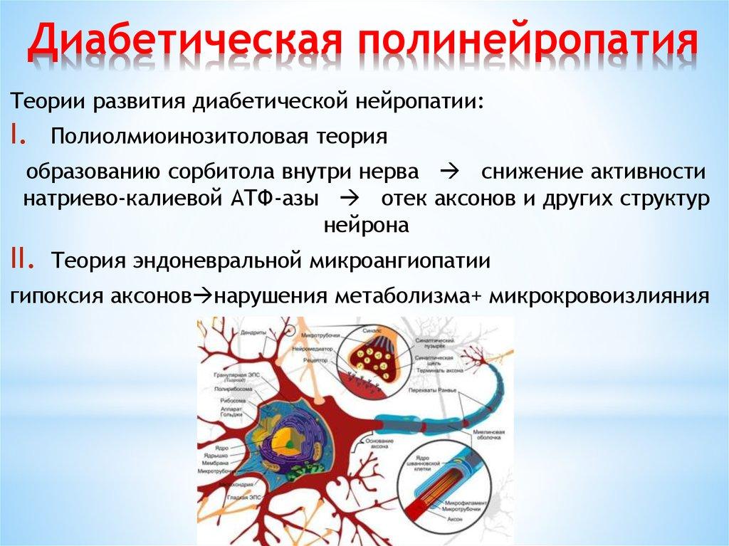 Диабетическая полинейропатия что это чем опасно заболевание