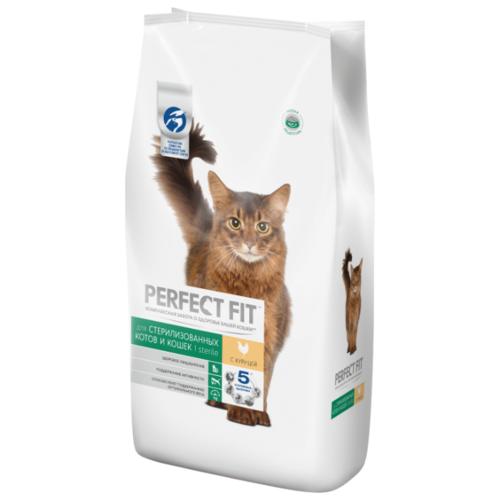 Present perfect (презент перфект) — правила и примеры употребления