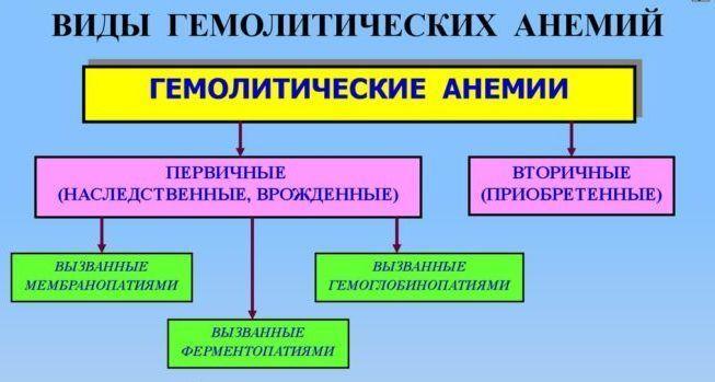 Особенности гемолитической анемии