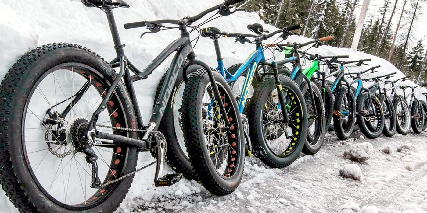 Что такое фэтбайк и в чем его преимущества | выбор велосипеда | veloprofy.com