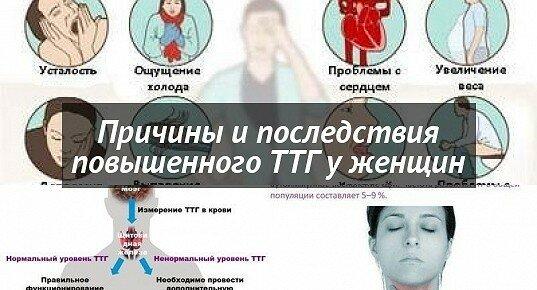 Анализ крови на ттг: подготовка, проведение и расшифровка результатов