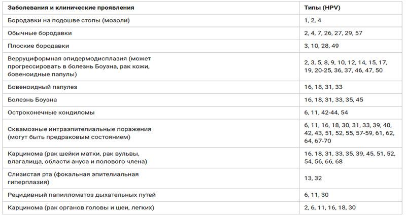 Впч 16 18 типа - анализы и цены