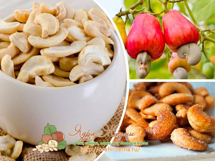 Кешью – это орех или нет?